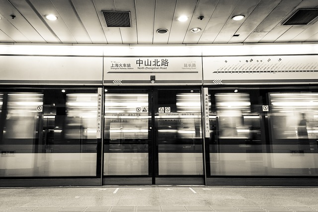 shanghai-456769_640