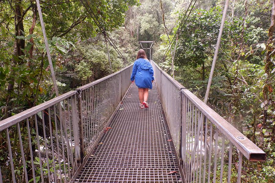 Mossman Gorge, Queensland