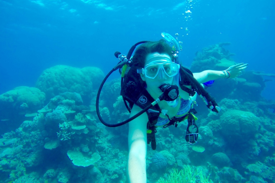 The best place to dive the great barrier reef for all diving abilities claire 39 s footsteps - Best place to dive the great barrier reef ...