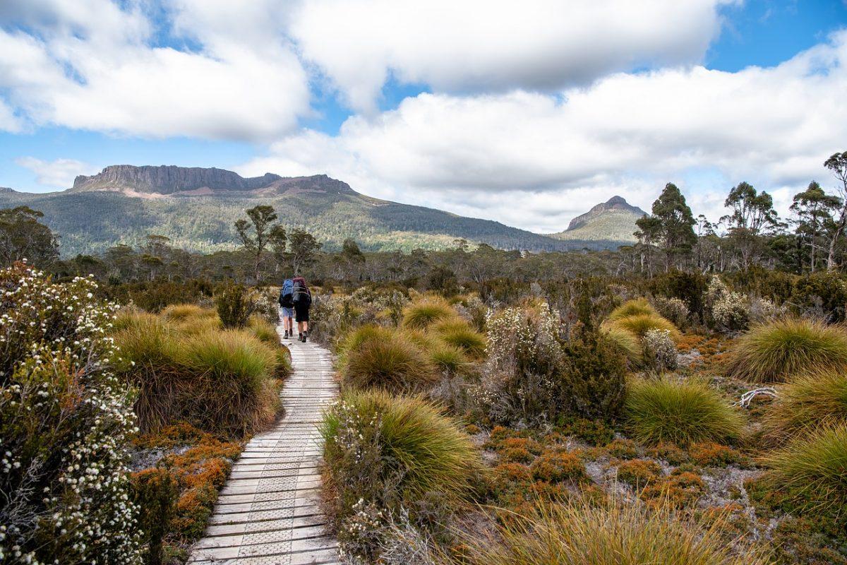tasmania things nature hiking lovers overland track places visit 1280